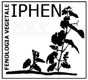 logo_IPHEN